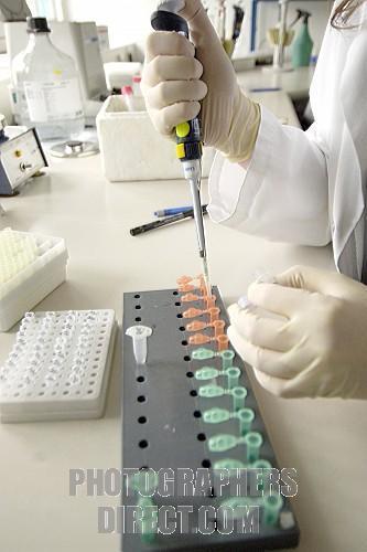 Prevenir el desarrollo del cáncer de hígado y combatir enfermedades autoinmunes.